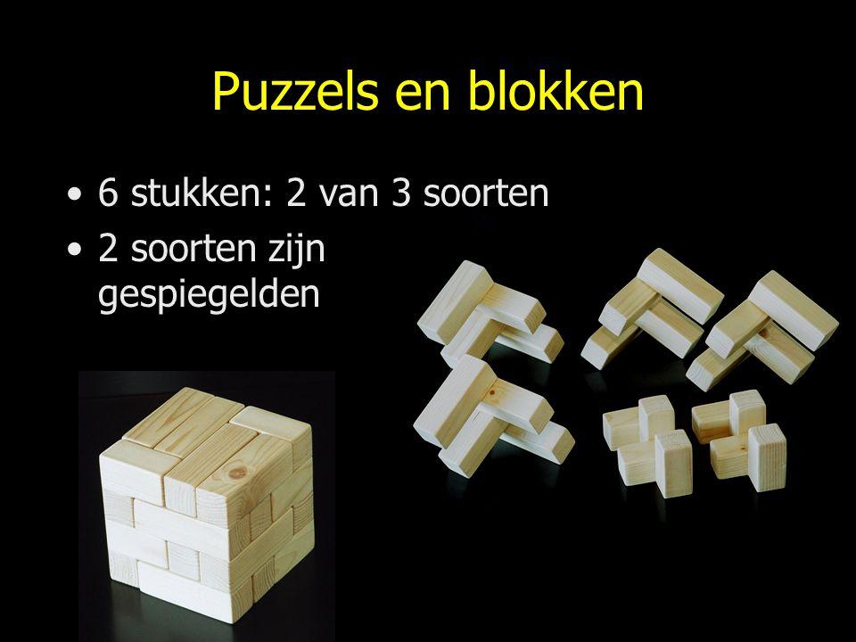 Puzzels en blokken 6 stukken: 2 van 3 soorten 2 soorten zijn gespiegelden