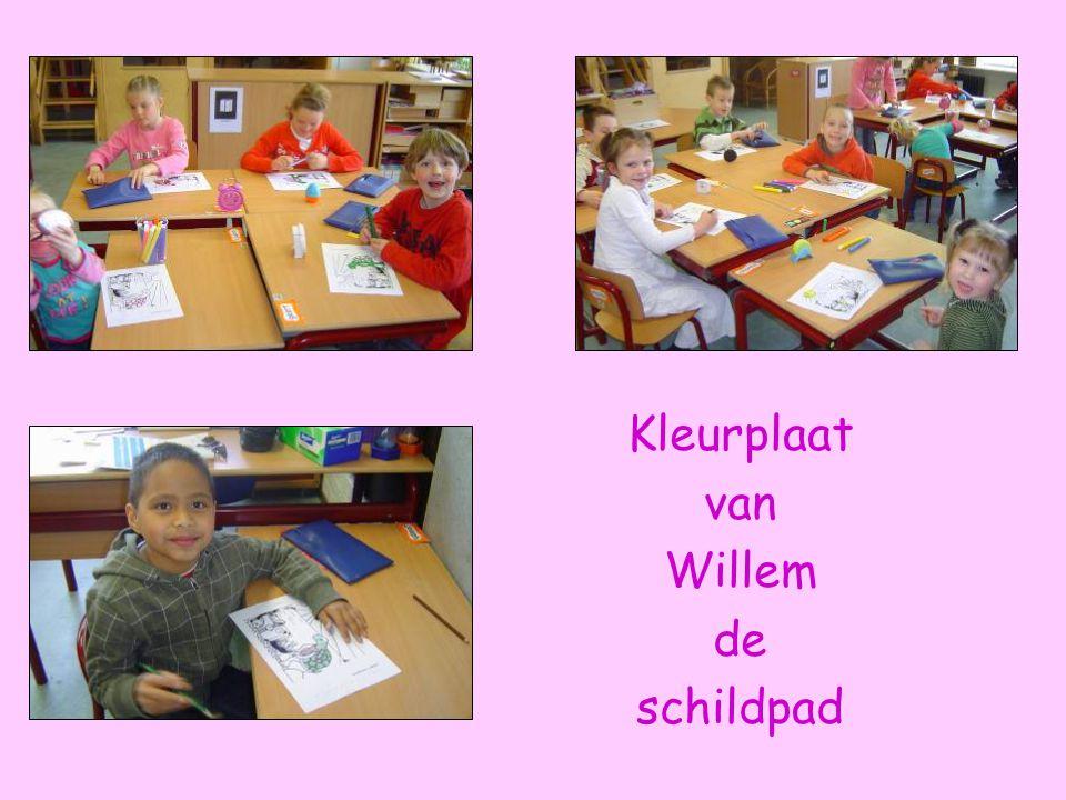 Kleurplaat van Willem de schildpad