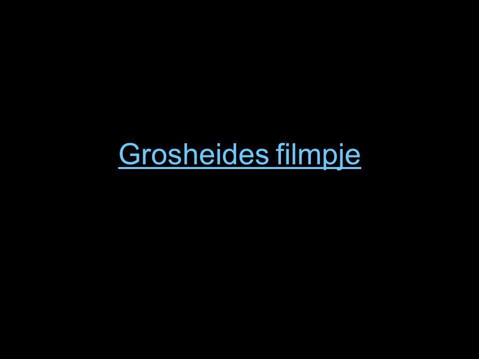 Grosheides filmpje