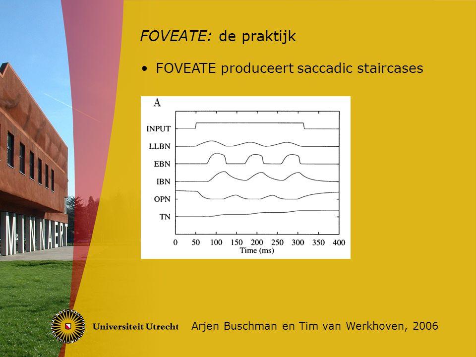 FOVEATE: de praktijk Arjen Buschman en Tim van Werkhoven, 2006 FOVEATE produceert saccadic staircases