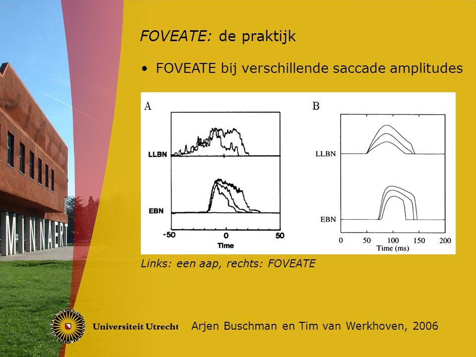 FOVEATE: de praktijk Arjen Buschman en Tim van Werkhoven, 2006 Links: een aap, rechts: FOVEATE FOVEATE bij verschillende saccade amplitudes