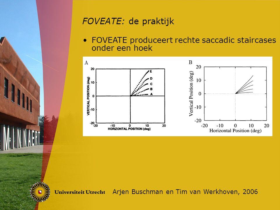 FOVEATE: de praktijk Arjen Buschman en Tim van Werkhoven, 2006 FOVEATE produceert rechte saccadic staircases onder een hoek