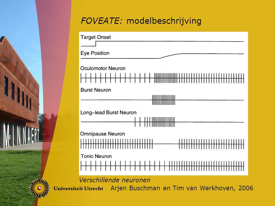 FOVEATE: modelbeschrijving Arjen Buschman en Tim van Werkhoven, 2006 De aansturing van een oogspier
