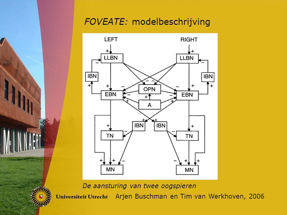 FOVEATE: modelbeschrijving Arjen Buschman en Tim van Werkhoven, 2006 De reset-cyclus
