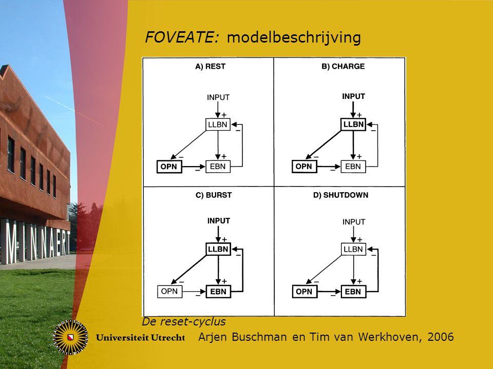 FOVEATE: de praktijk Arjen Buschman en Tim van Werkhoven, 2006 FOVEATE werkt bij een onderbroken saccade