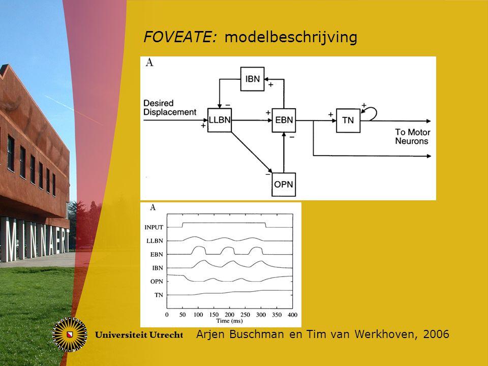 FOVEATE: modelbeschrijving Arjen Buschman en Tim van Werkhoven, 2006 Saccadic staircase Linkerspier actief, rechterspier geïnhibeerd