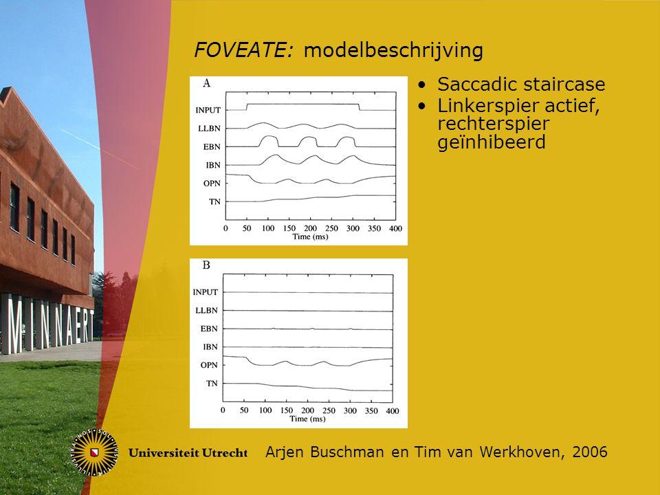 FOVEATE: vergelijking Arjen Buschman en Tim van Werkhoven, 2006 FOVEATE in vergelijking met andere modellen