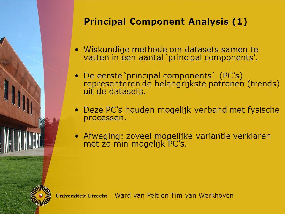 Wiskundige methode om datasets samen te vatten in een aantal 'principal components'.