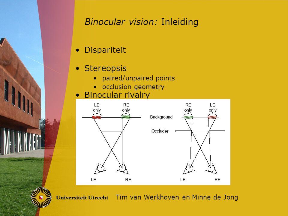 Meerdere stadia lager en hogere hersengebieden Binocular energy model levert dispariteit Resultaat elk stadium Heaviside functie Uiteindelijke resultaat een depth detection map Binocular vision: Model Tim van Werkhoven en Minne de Jong