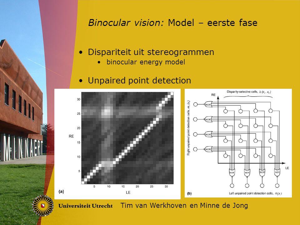 Dispariteit uit stereogrammen binocular energy model Unpaired point detection Binocular vision: Model – eerste fase Tim van Werkhoven en Minne de Jong