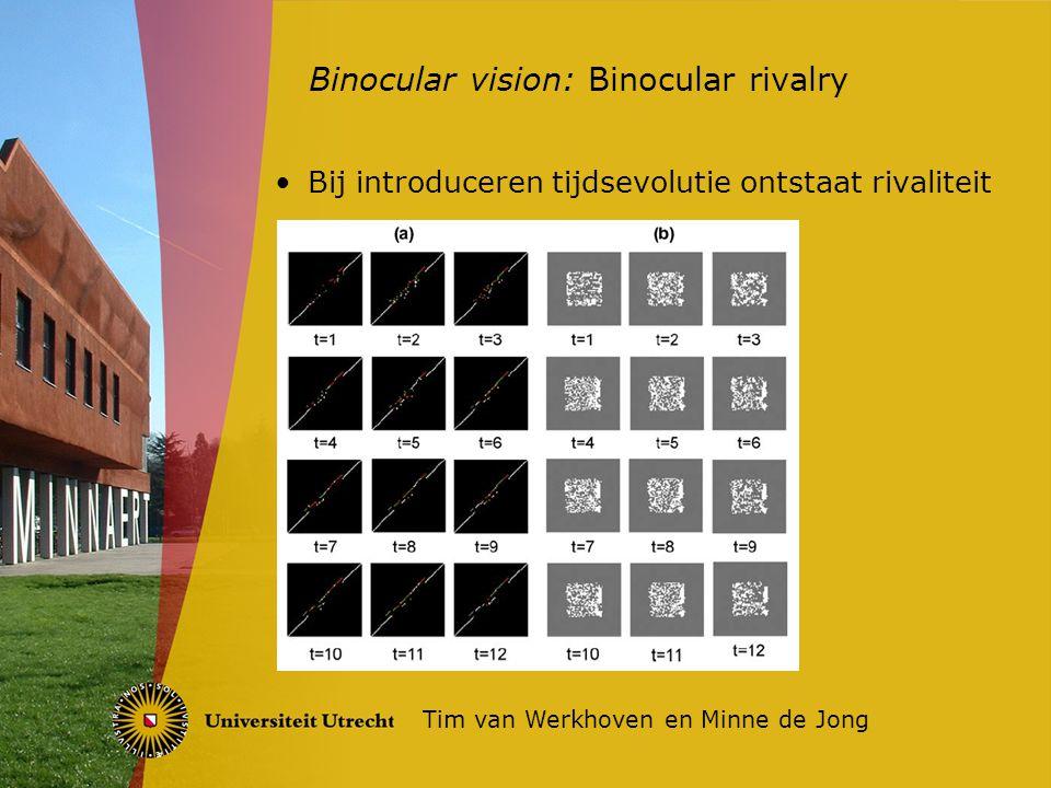 Bij introduceren tijdsevolutie ontstaat rivaliteit Binocular vision: Binocular rivalry Tim van Werkhoven en Minne de Jong