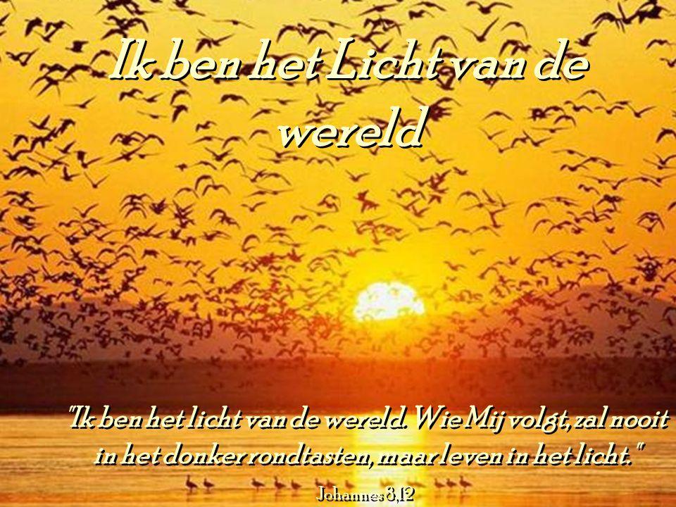 Ik ben het Licht van de wereld Ik ben het Licht van de wereld Ik ben het licht van de wereld.