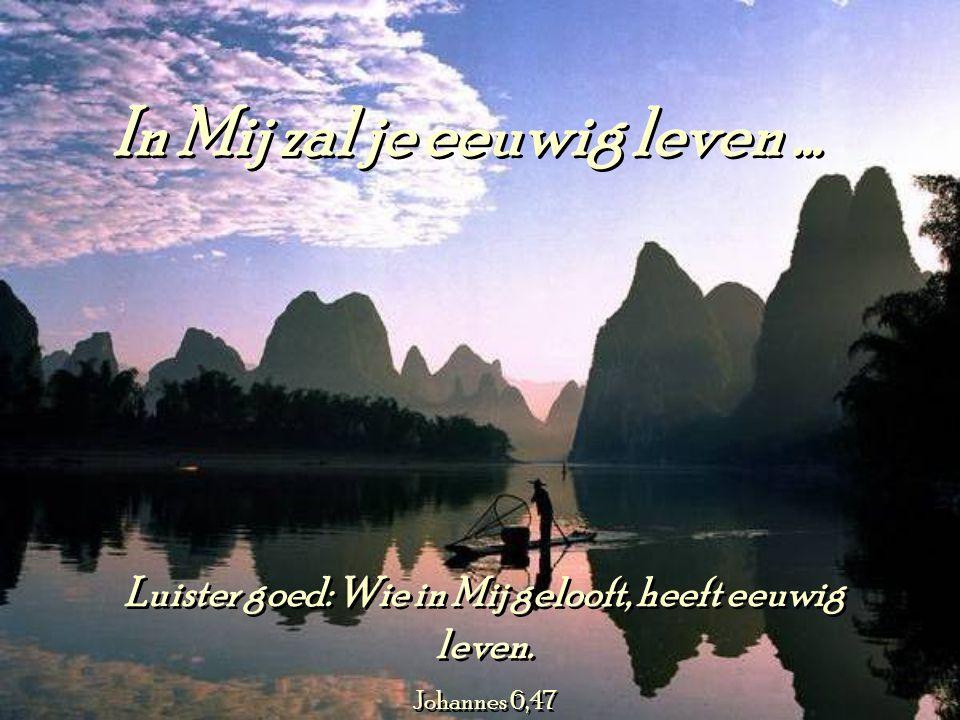 In Mij zal je eeuwig leven...Luister goed: Wie in Mij gelooft, heeft eeuwig leven.