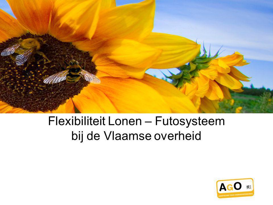 Flexibiliteit Lonen – Futosysteem bij de Vlaamse overheid