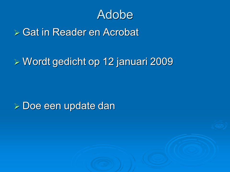 Adobe  Gat in Reader en Acrobat  Wordt gedicht op 12 januari 2009  Doe een update dan