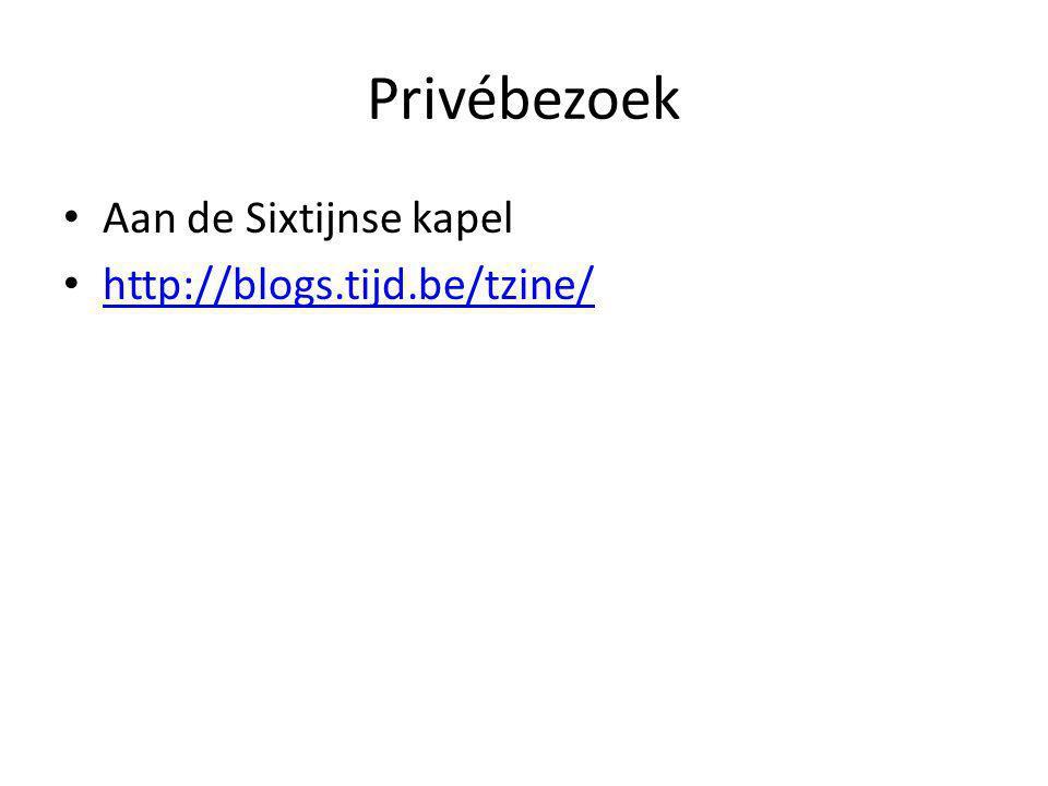 Privébezoek Aan de Sixtijnse kapel http://blogs.tijd.be/tzine/