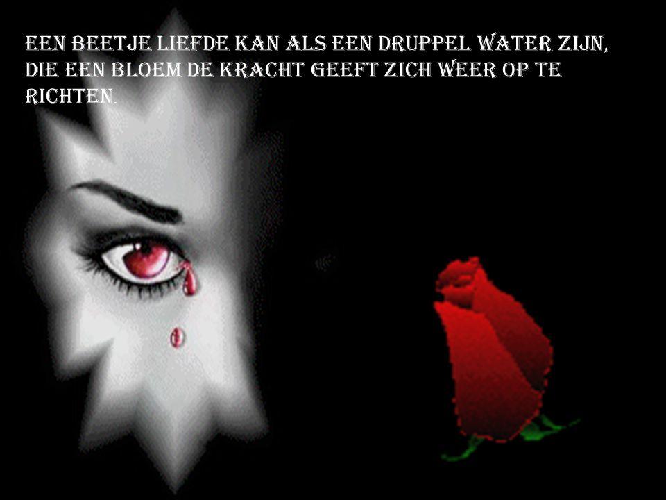 Een beetje liefde kan als een druppel water zijn, Die een bloem de kracht geeft zich weer op te richten.