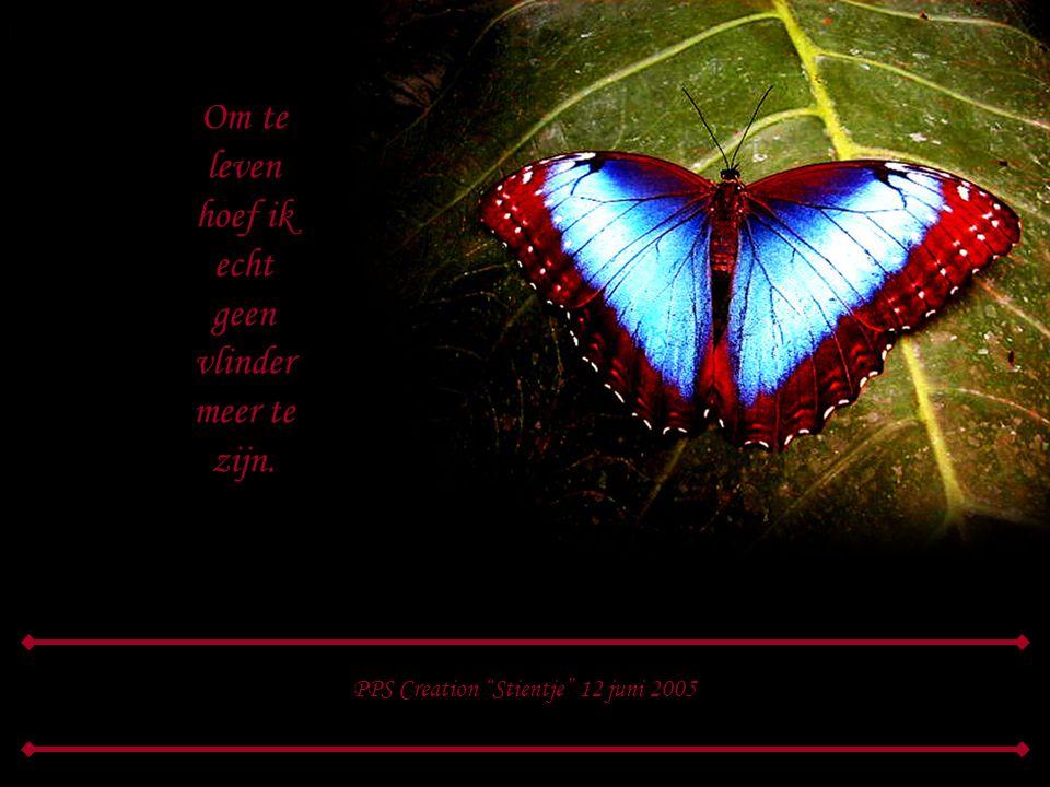 als zelfs vlinders kunnen sterven, laat ik niet mijn vreugd bederven, ik kan zonder vliegen leven, wat zal ik nog langer geven, om een vlinder die ver