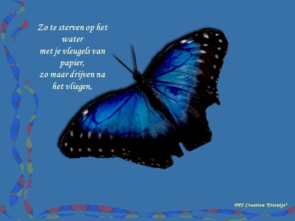 Om te leven, dacht ik, je zou een vlinder moeten zijn, om te vliegen heel ver weg van alle leven, alle pijn.