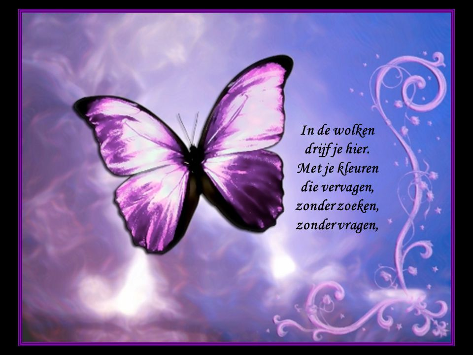 als zelfs vlinders kunnen sterven, laat ik niet mijn vreugd bederven, ik kan zonder vliegen leven, wat zal ik nog langer geven, om een vlinder die verdronken is in mij?