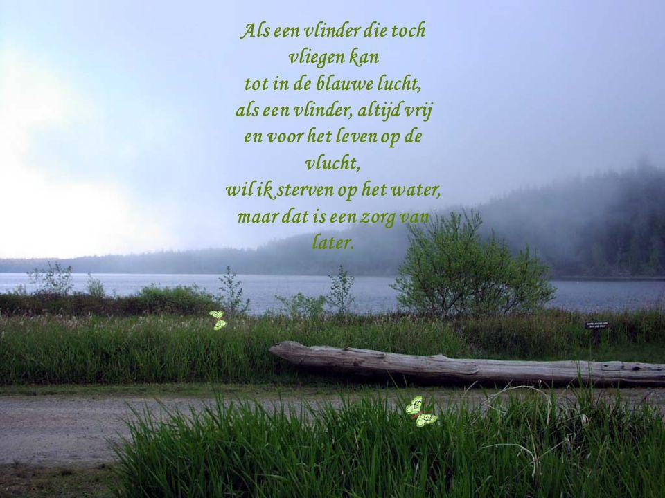 Alles kan je nu vergeten, op het water wieg je heen en weer. Zo te sterven op het water met je vleugels van papier.