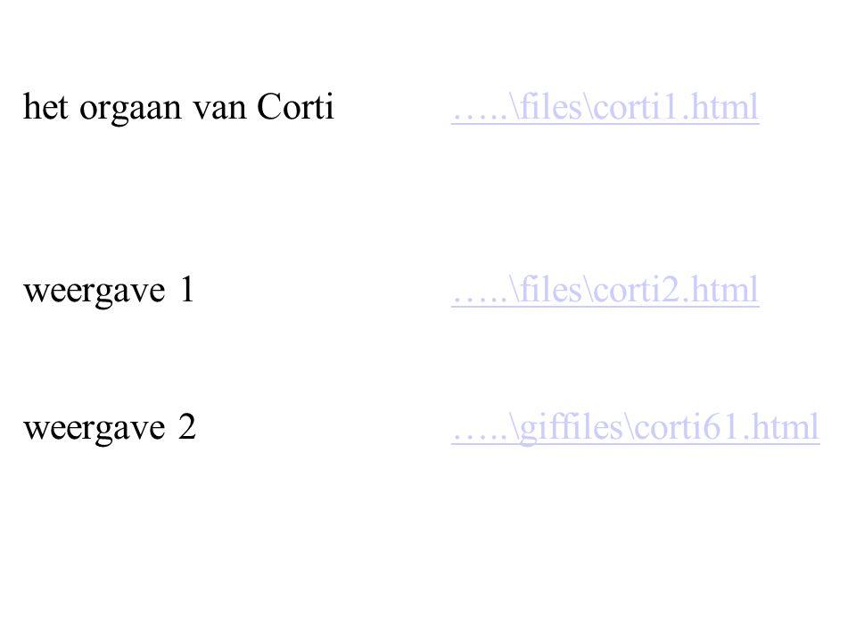 het orgaan van Corti …..\files\corti1.html weergave 1 …..\files\corti2.html weergave 2 …..\giffiles\corti61.html…..\files\corti1.html…..\files\corti2.html…..\giffiles\corti61.html