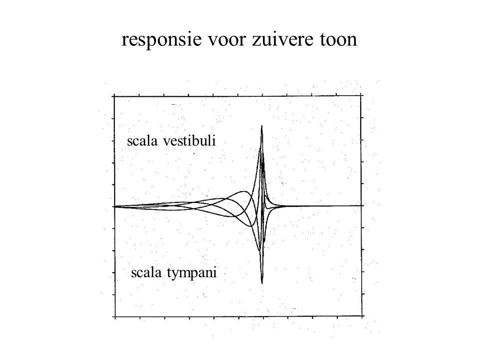 responsie voor zuivere toon scala vestibuli scala tympani