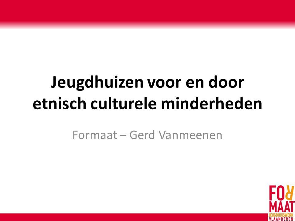 Jeugdhuizen voor en door etnisch culturele minderheden Formaat – Gerd Vanmeenen
