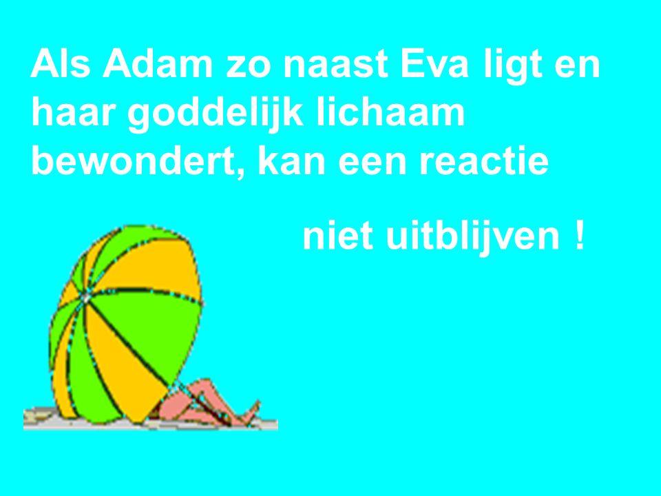 Als Adam zo naast Eva ligt en haar goddelijk lichaam bewondert, kan een reactie niet uitblijven !