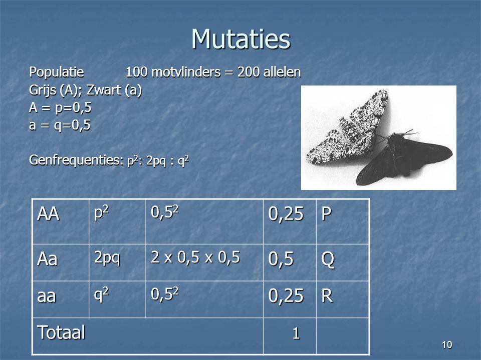 10 Mutaties Populatie100 motvlinders = 200 allelen Grijs (A); Zwart (a) A = p=0,5 a = q=0,5 Genfrequenties: p 2 : 2pq : q 2 AA p2p2p2p2 0,5 2 0,25P Aa