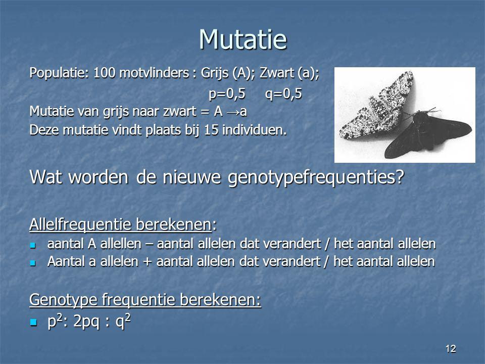 12 Mutatie Populatie: 100 motvlinders : Grijs (A); Zwart (a); p=0,5 q=0,5 p=0,5 q=0,5 Mutatie van grijs naar zwart = A → a Deze mutatie vindt plaats b