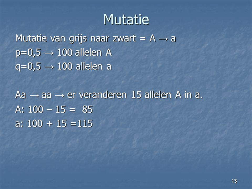 13 Mutatie Mutatie van grijs naar zwart = A → a p=0,5 → 100 allelen A q=0,5 → 100 allelen a Aa → aa → er veranderen 15 allelen A in a. A: 100 – 15 = 8