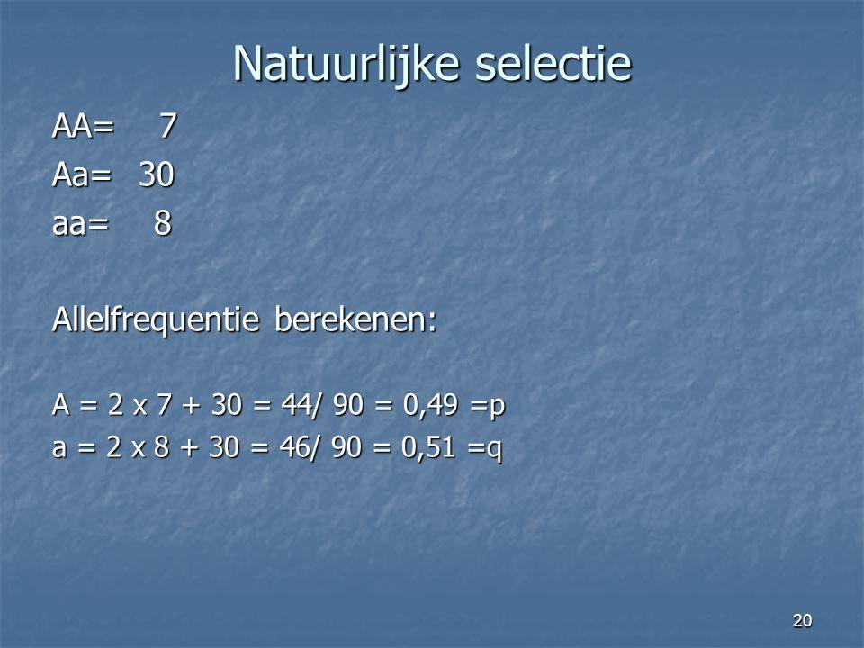 20 Natuurlijke selectie AA= 7 Aa=30 aa= 8 Allelfrequentie berekenen: A = 2 x 7 + 30 = 44/ 90 = 0,49 =p a = 2 x 8 + 30 = 46/ 90 = 0,51 =q