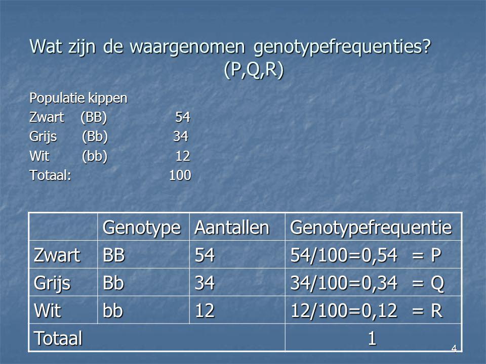 4 Wat zijn de waargenomen genotypefrequenties? (P,Q,R) Populatie kippen Zwart (BB)54 Grijs (Bb) 34 Wit (bb)12 Totaal: 100 GenotypeAantallenGenotypefre