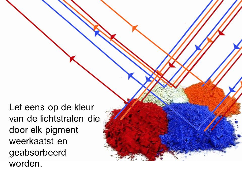 Let eens op de kleur van de lichtstralen die door elk pigment weerkaatst en geabsorbeerd worden.