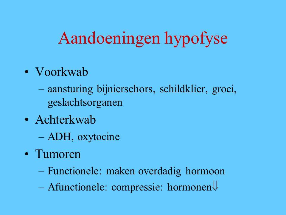 Aandoeningen hypofyse Voorkwab –aansturing bijnierschors, schildklier, groei, geslachtsorganen Achterkwab –ADH, oxytocine Tumoren –Functionele: maken overdadig hormoon –Afunctionele: compressie: hormonen 