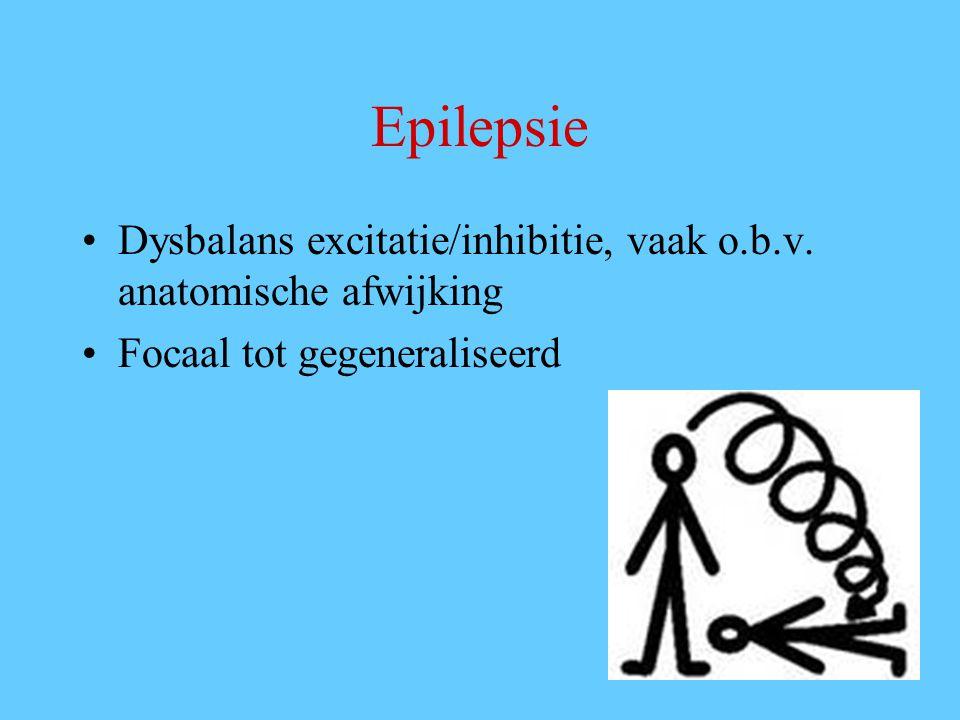 Epilepsie Dysbalans excitatie/inhibitie, vaak o.b.v.