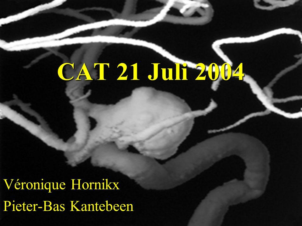 CAT 21 Juli 2004 Véronique Hornikx Pieter-Bas Kantebeen