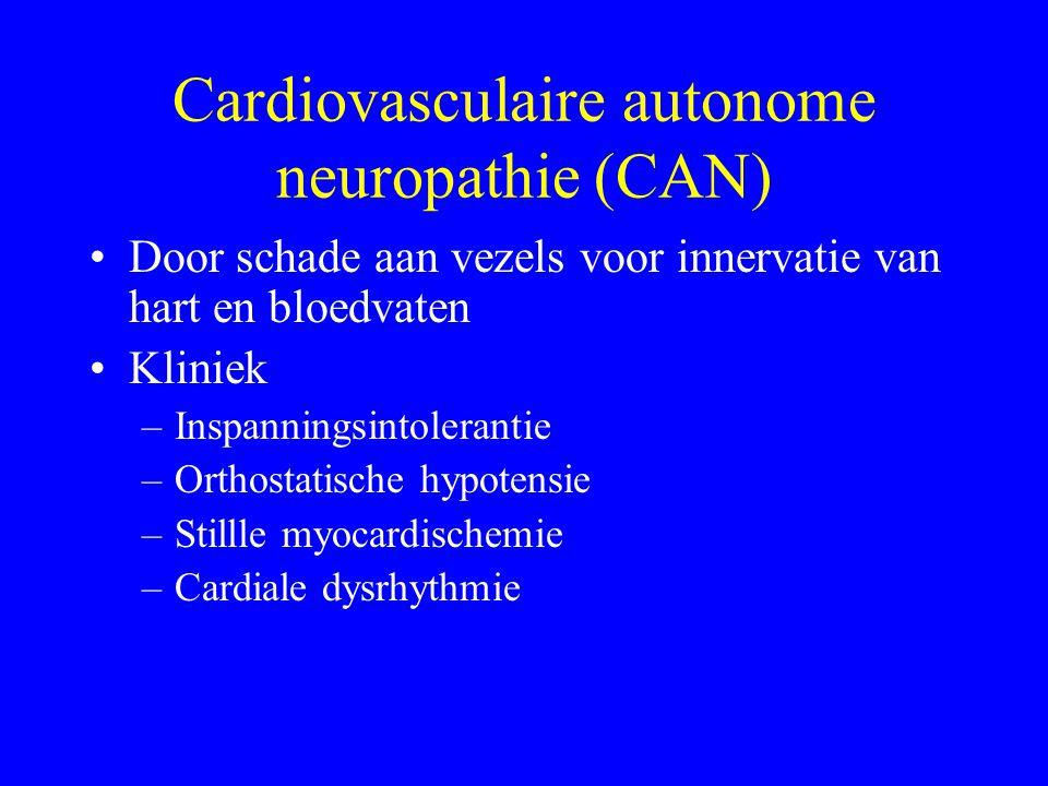 Cardiovasculaire autonome neuropathie (CAN) Door schade aan vezels voor innervatie van hart en bloedvaten Kliniek –Inspanningsintolerantie –Orthostatische hypotensie –Stillle myocardischemie –Cardiale dysrhythmie