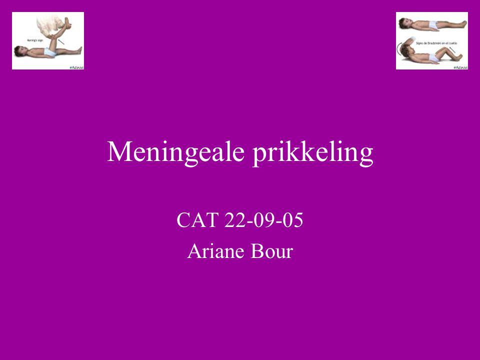 Meningeale prikkeling CAT 22-09-05 Ariane Bour