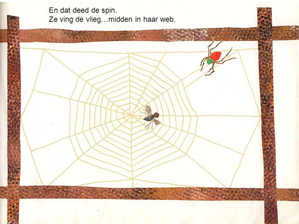 'Kukeleku,' kraaide de haan. 'Zullen we die vervelende vlieg eens vangen '