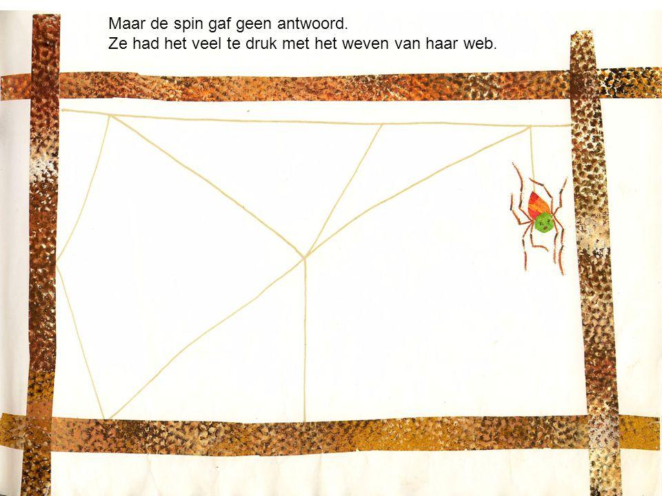 Maar de spin gaf geen antwoord. Ze had het veel te druk met het weven van haar web.
