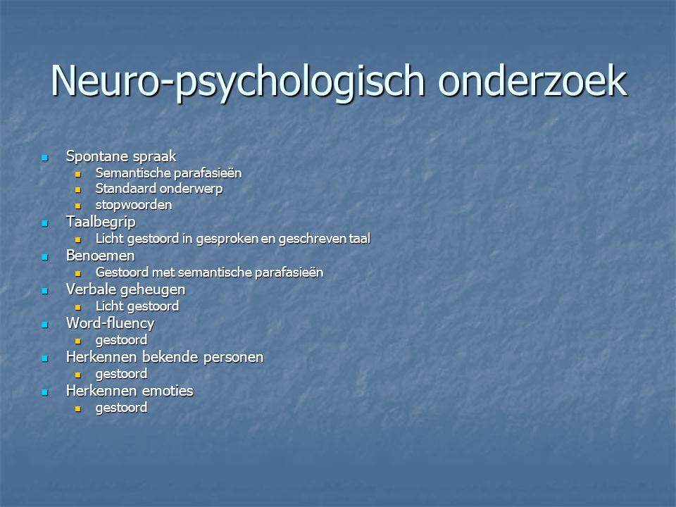 Neuro-psychologisch onderzoek Spontane spraak Spontane spraak Semantische parafasieën Semantische parafasieën Standaard onderwerp Standaard onderwerp