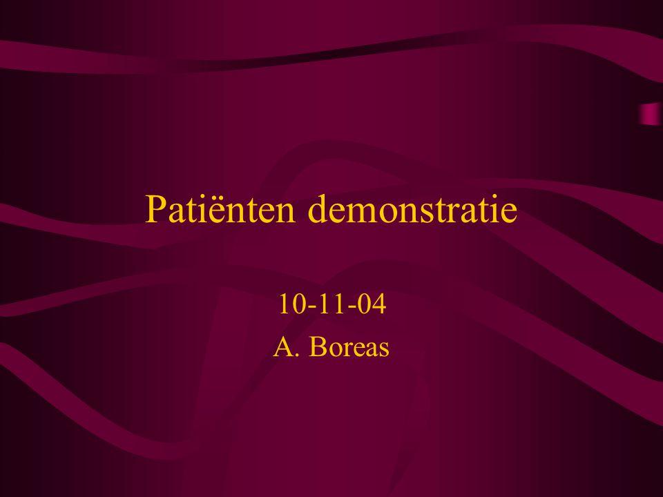 Patiënten demonstratie 10-11-04 A. Boreas