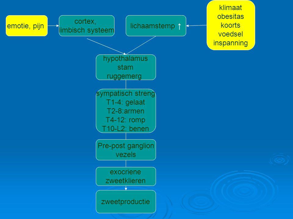 oorzaken IdiopatischSecundair  focaal: Frey syndroom, gelokaliseerd unilaterale hyperhidrose, reflex dystrofie  regionaal: - distaal: Thallium, arsenicum, (pijnlijke DM-neuropathie) - hemihyperhidrosis: post-CVA, idiopatisch - gecompenseerde anhidrose (sympatectomie, Rosssyndroom, CNS lesies, neuropathie) - overig: myelumschade  gegeneraliseerd: medicatie, intoxicaties, cardiovasculair, infecties, maligniteit, endocrien, parkinson Episodisch: idiopatisch (C?), agenesis corpus callosum (episodische hypothalamus ontladingen)