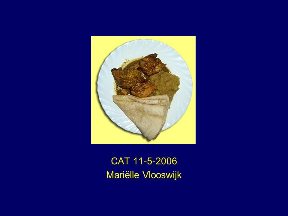 CAT 11-5-2006 Mariëlle Vlooswijk