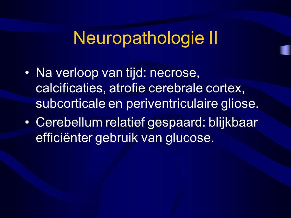 Neuropathologie II Na verloop van tijd: necrose, calcificaties, atrofie cerebrale cortex, subcorticale en periventriculaire gliose.