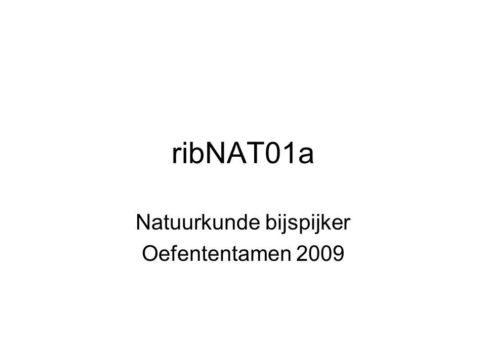 ribNAT01a Natuurkunde bijspijker Oefententamen 2009