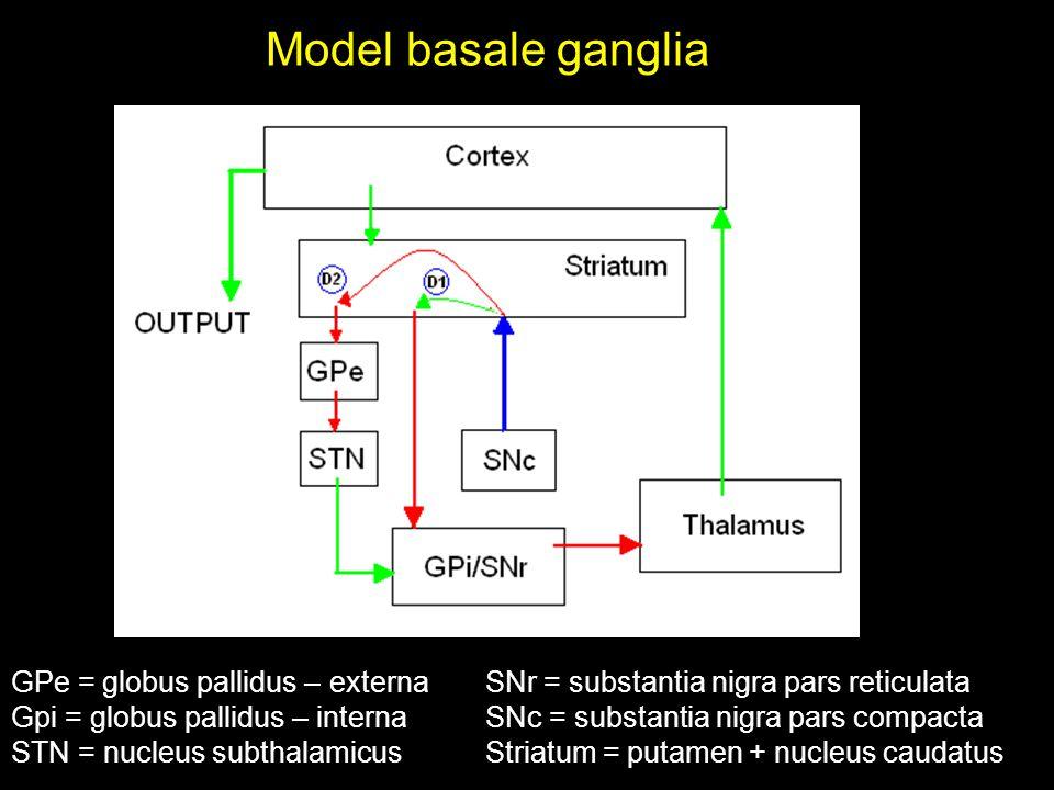Model basale ganglia GPe = globus pallidus – externa Gpi = globus pallidus – interna STN = nucleus subthalamicus SNr = substantia nigra pars reticulata SNc = substantia nigra pars compacta Striatum = putamen + nucleus caudatus