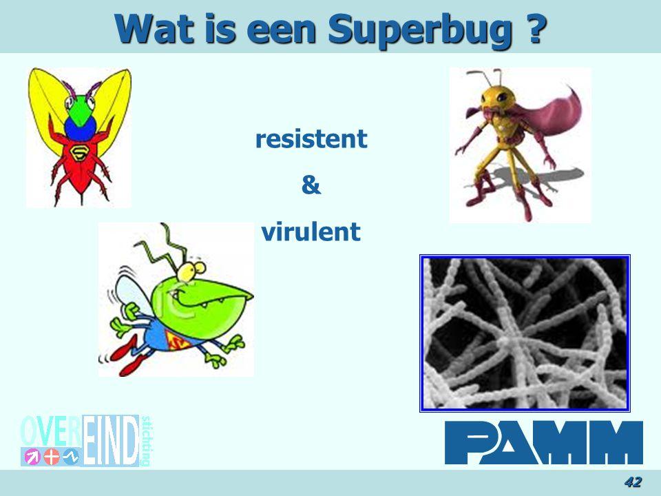 Wat is een Superbug ? resistent & virulent 42